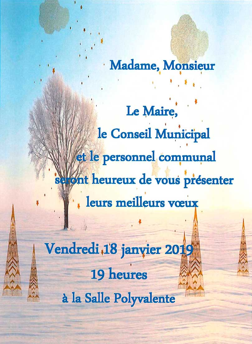 Invitation vœux du maire,